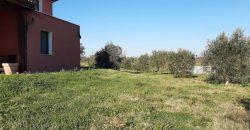 Rif 118 CT Manciano vicino Marsiliana Villino indipendente con terreno